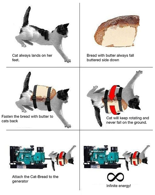 funny-cat-toast-infinite-energy
